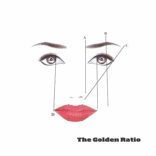 perpetual permanent makeup golden ratio ruler