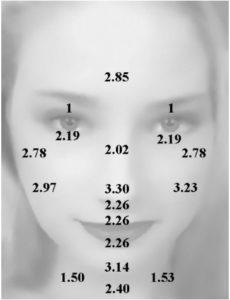skin thickness chart