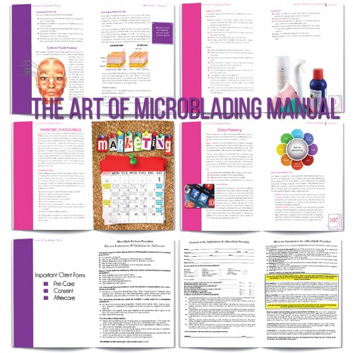 The Art of Microblading Debbie Mcclellan 5